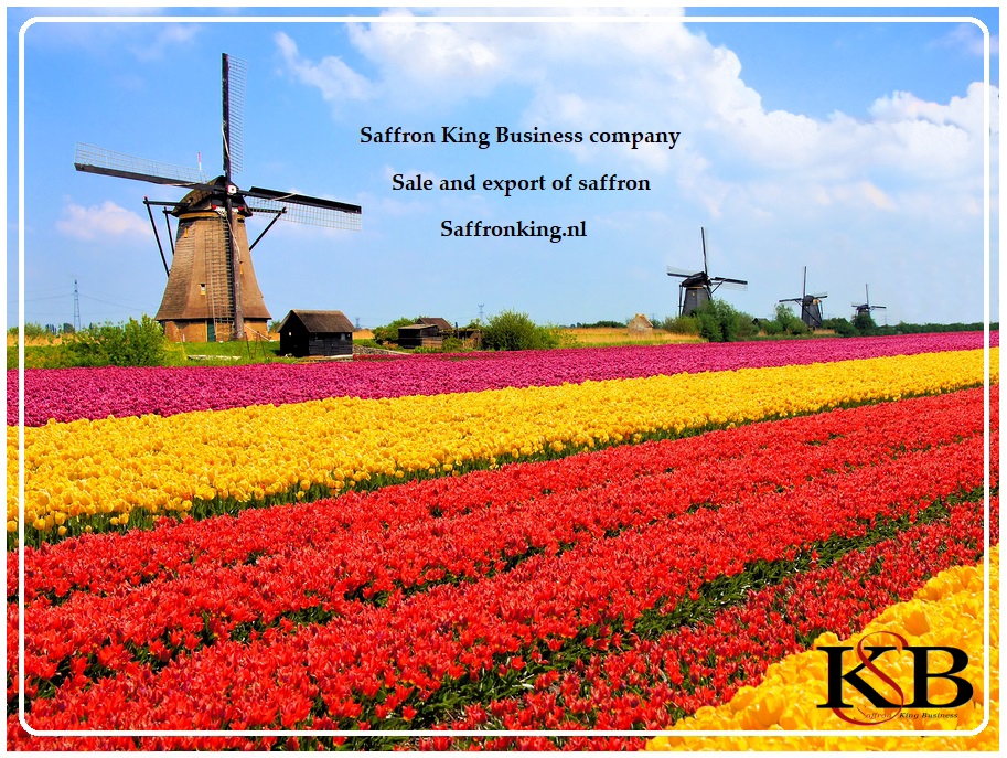Importing saffron to the Netherlands
