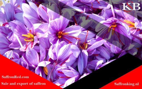 Effective factors on saffron price