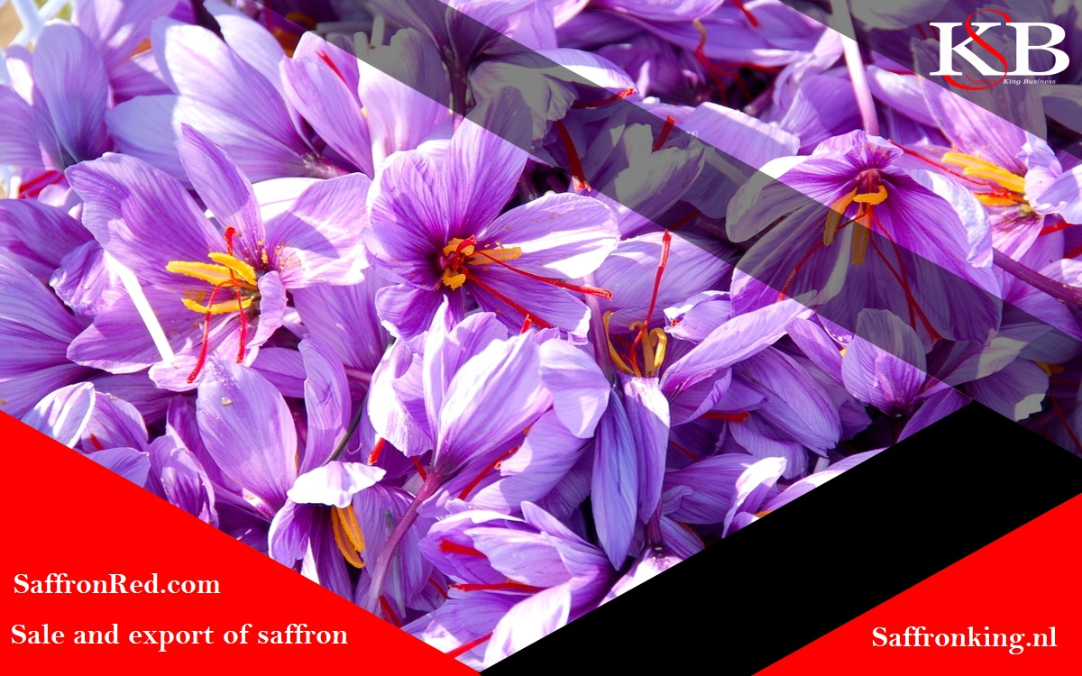 Prices of saffron on the world market