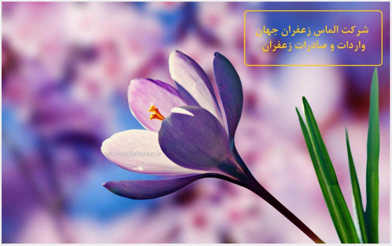 Price of saffron per gram in Tehran